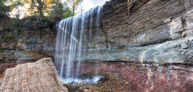 Indian Falls Conservation Area